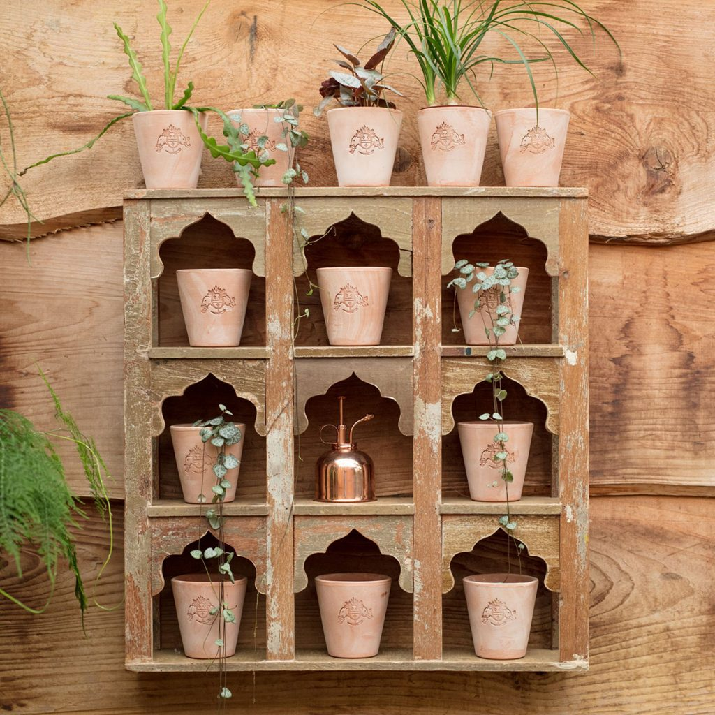 Terracotta pots, from £8.50, Petersham Nurseries