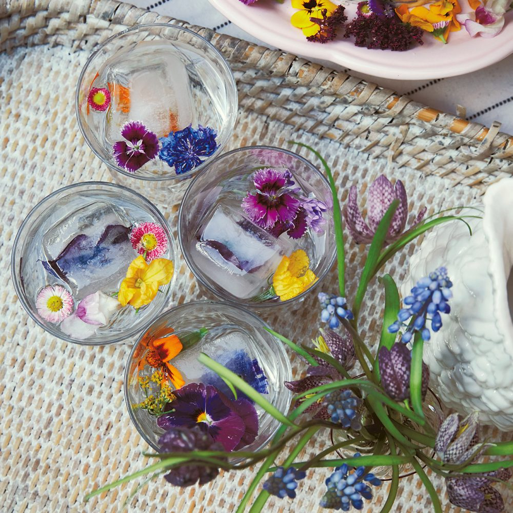 How to Create Rowan Blossom's Floral Drinks Garnishes