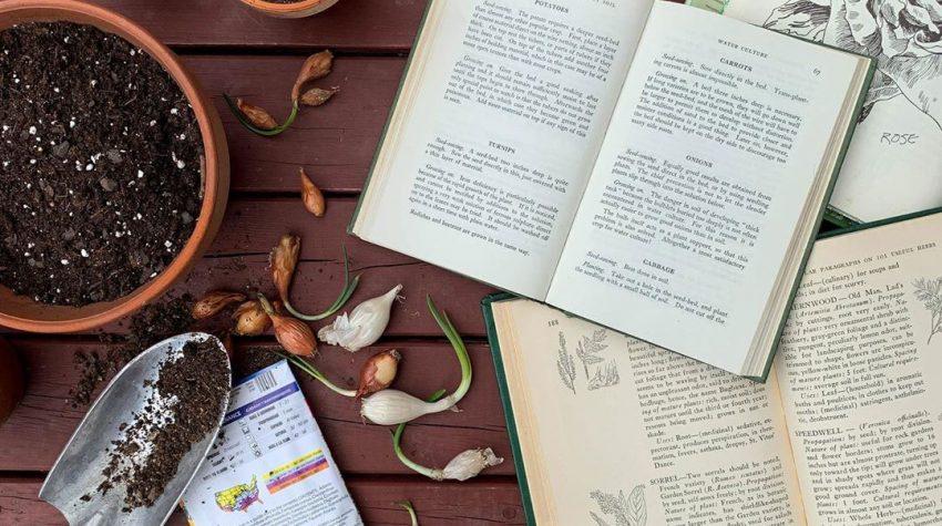 Brett Braley Palko garden books flatlay