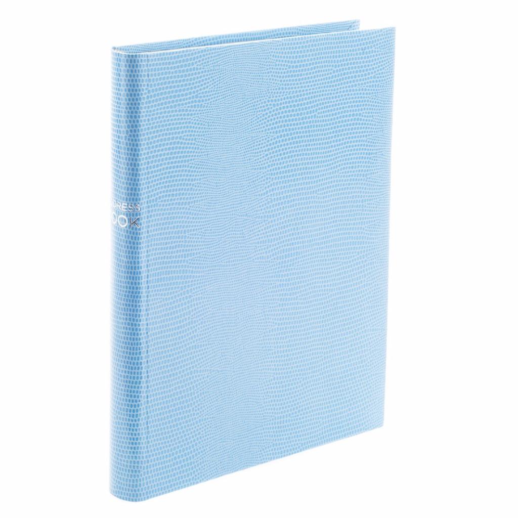 Sky Blue Jubilee Address Book, £80, Noble Macmillan