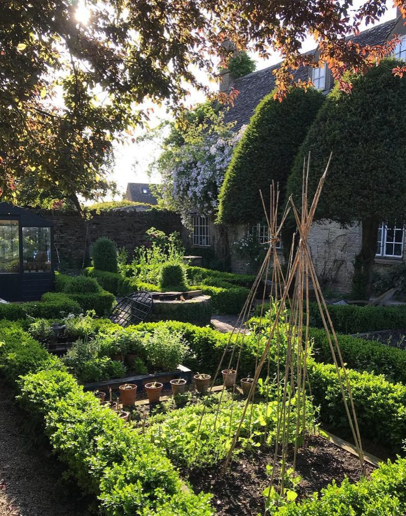Four vegetables gardens bordered with box hedging and two topiary trees in the garden of florist and author Willow Crossley's house in the Cotswolds
