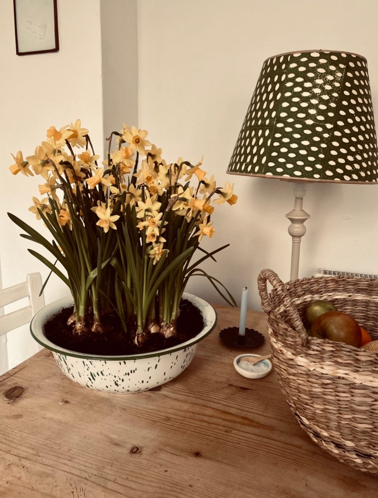 splatter bowl filled with narcissus om wooden table with wicker basket of fruit and lamp in the Cotswolds home of interior designer Victoria Barker, founder of Studio Faeger