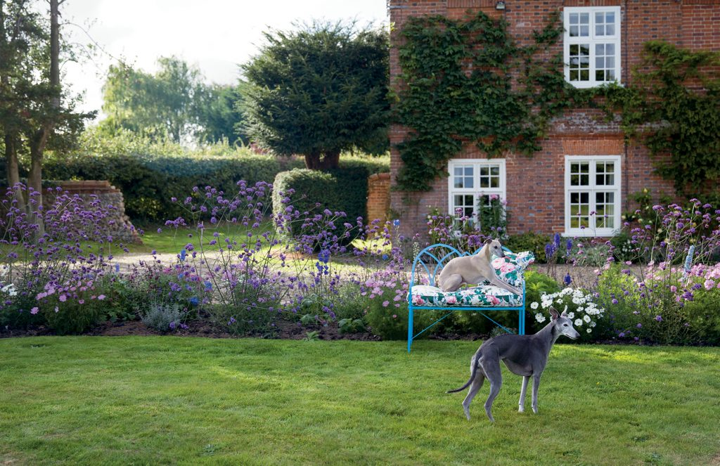 Carlos Sánchez-García's dogs in the garden of his Norfolk home from At Home in the English Countryside Designers and their Dogs by Susanna Salk © Stacey Bewkes