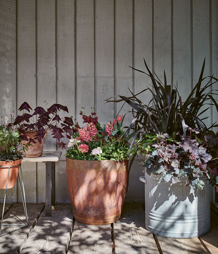 Metal and terracotta planters filled with flowers and foliage on garden decking, from Modern Container Gardening by Isabelle Palmer, image by Nassima Rothacker