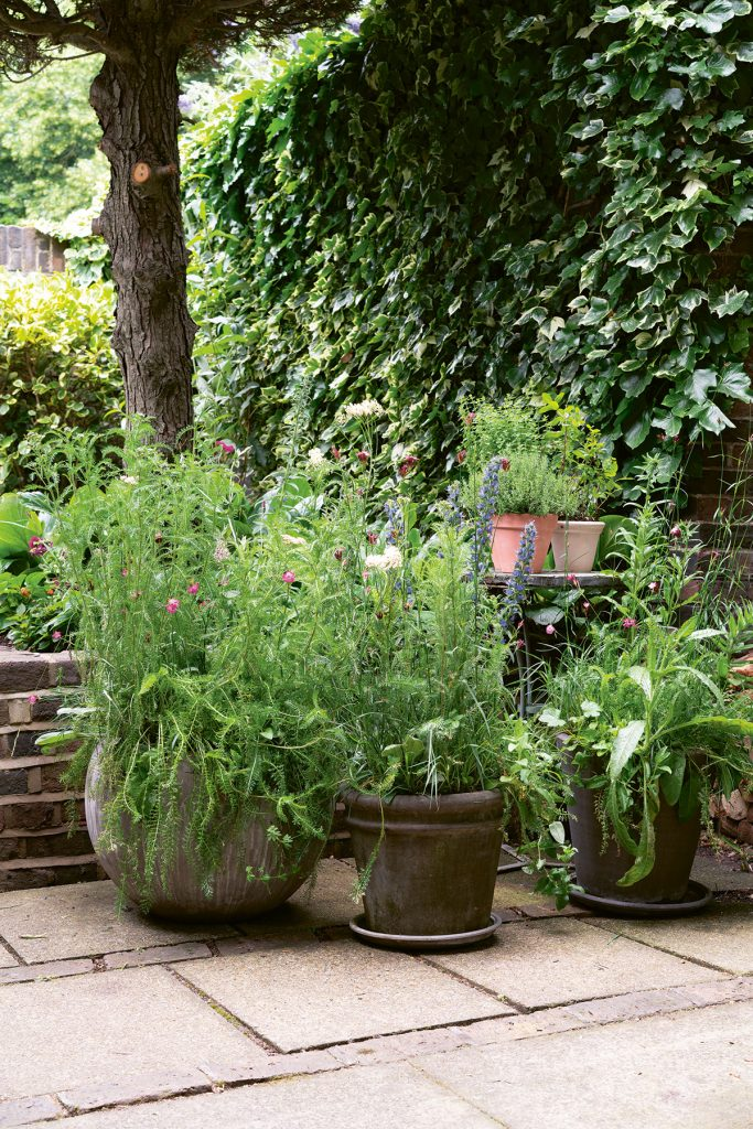 Garden patio with pots filled with flowers and foliage from Modern Container gardening by Isabelle Palmer, image by Jacqui Melville