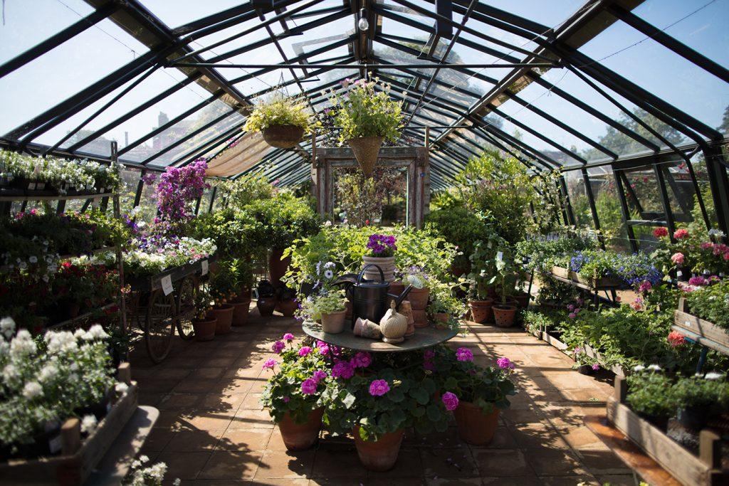 Petersham Nurseries conservatory
