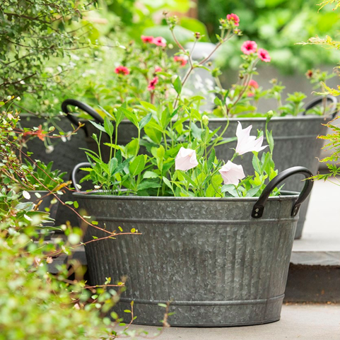 Oval tub with handles planter Waitrose & Partners
