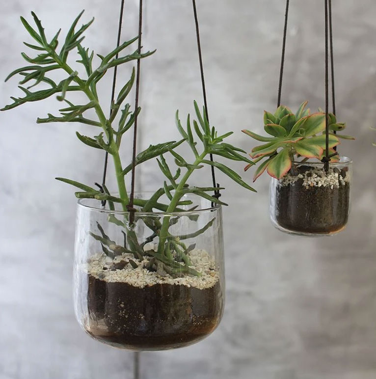 Viri-glass hanging-planter,-from-£12.95,-nkuku