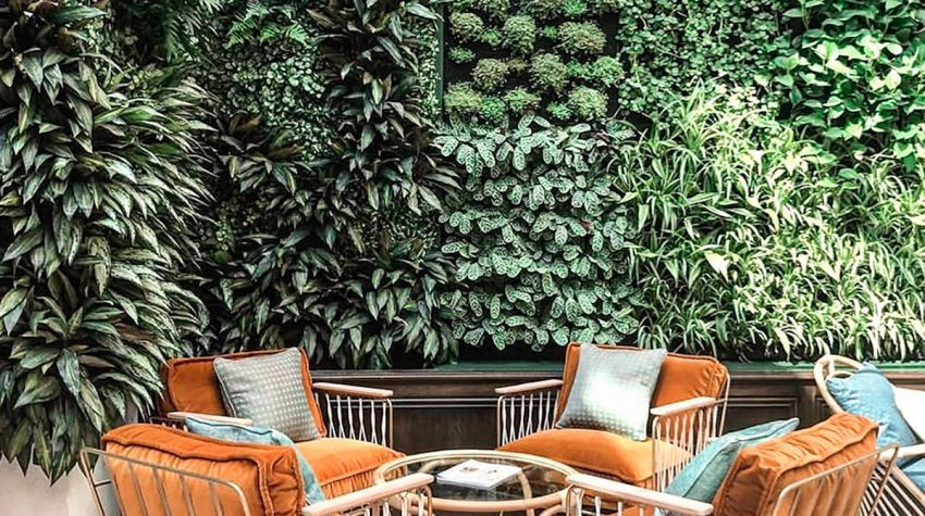 brown-wooden-armchairs-and-vertical green wall in patio garden
