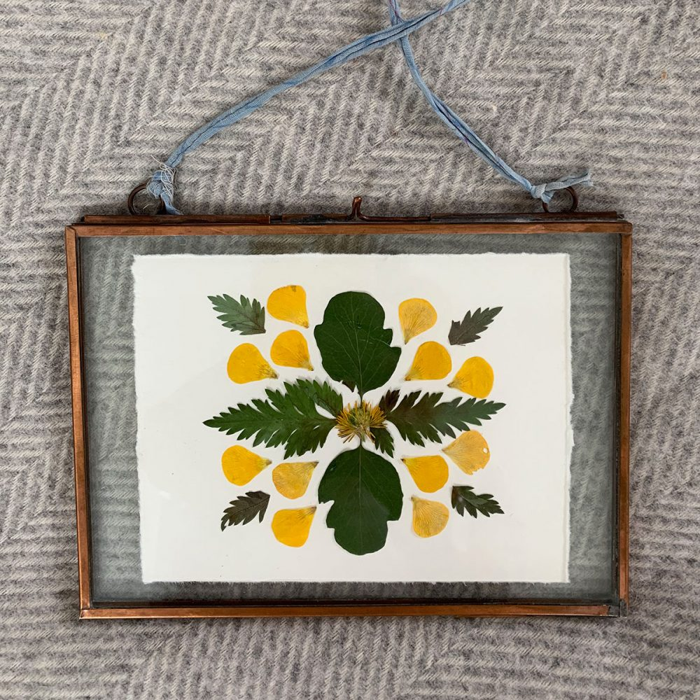Video: Framing Ideas For Your Pressed Flowers