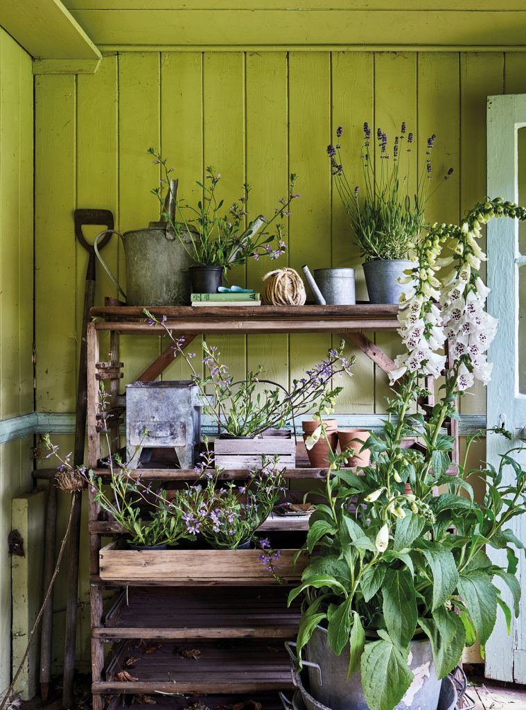 Jane Cumberbatch shed interior Shed Style by Selina Lake Jane Cumberbatch Shed Stle by Selina Lake © Ryland Peters & Small