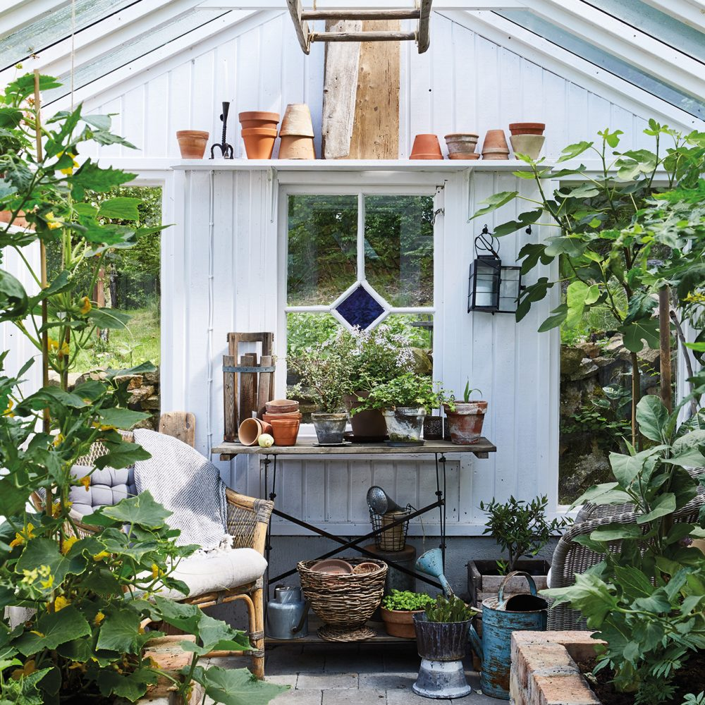 How to Create a Charming & Stylish Shed