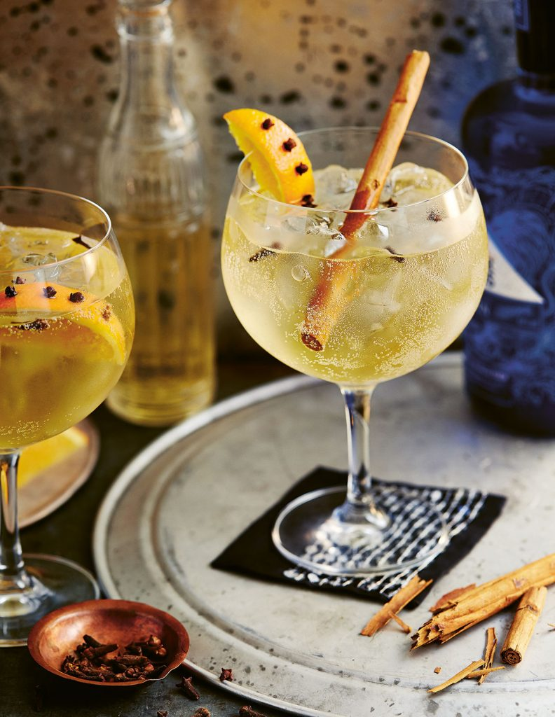 Winter Gin Tonica with orange wedge with cloves and cinnamon stickfrom Winter Drinks published by Ryland Peters & Small