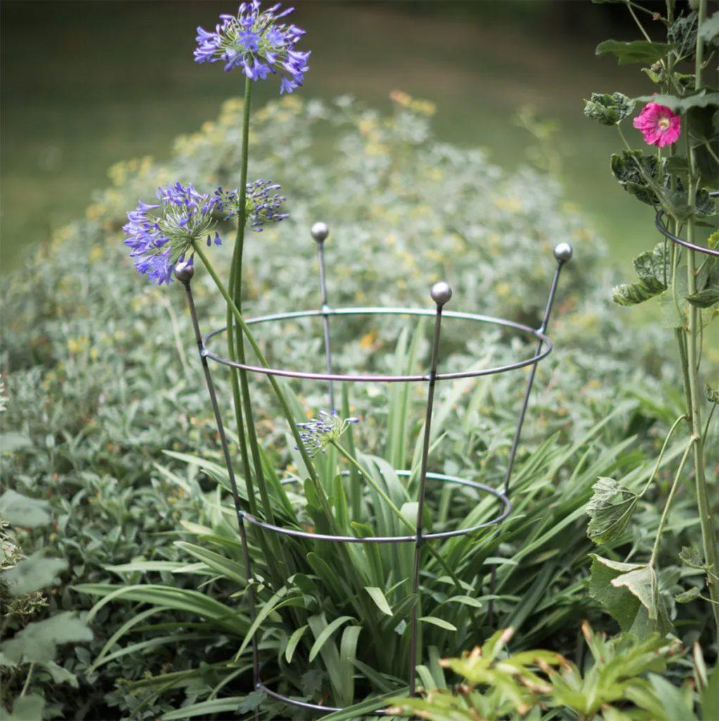 Barrington flared plant support, £55, Garden Trading