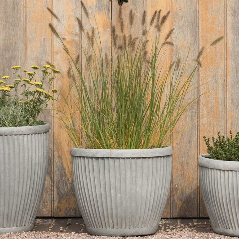 Galvanised dolly pot, from £44.99, Crocus