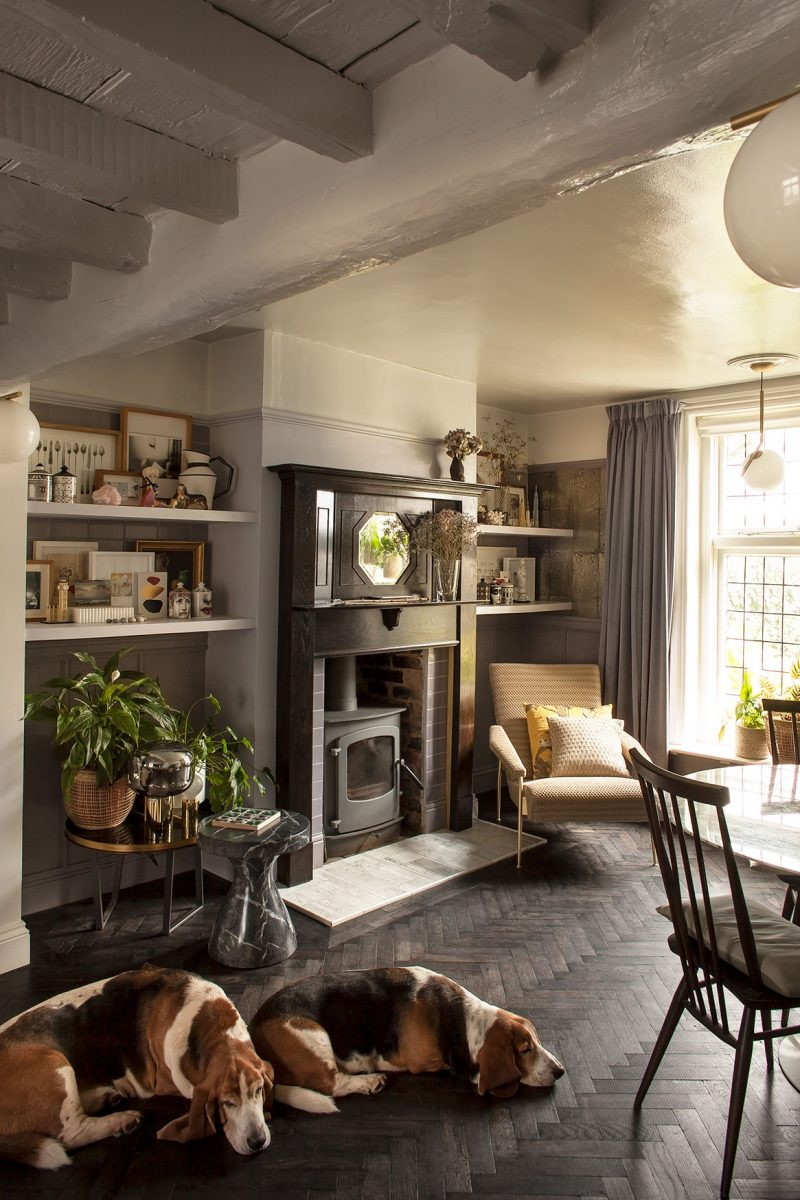 Michelle Ogundehin's dogs by the fireplace in dining room at her home in Brighton. Image Marianna Wahlsten