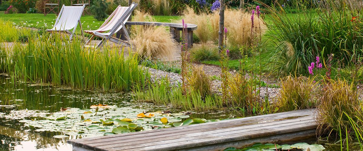 Natural Swimming Pond at Ellicar Gardens in Nottinghamshire by Clive Nichols.From The Naturally Beautiful Garden by Kathryn Bradley-Hole