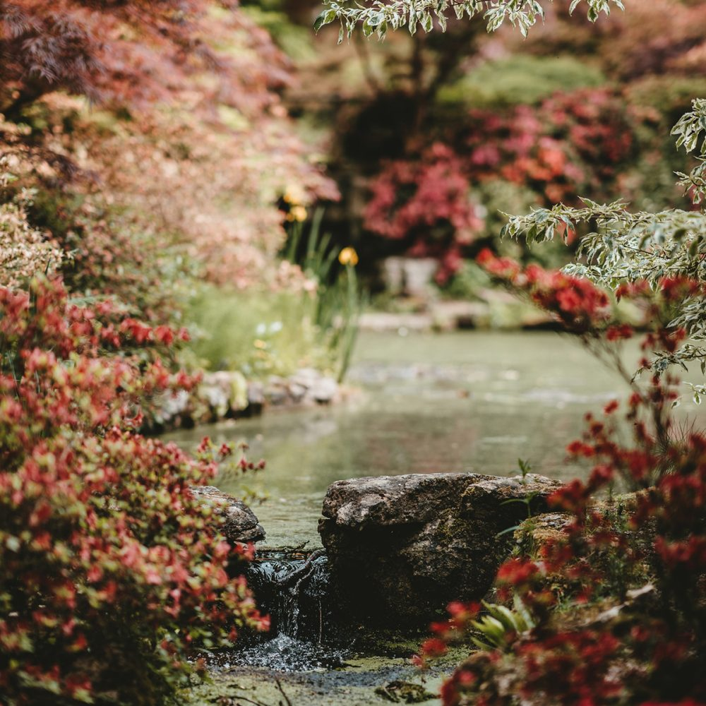 How to Create a beautiful Autumn Garden and Prepare it for Spring
