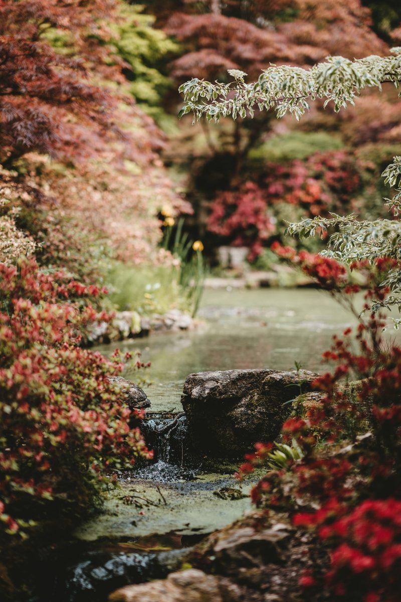 Annie Spratt Unsplash autumn colour